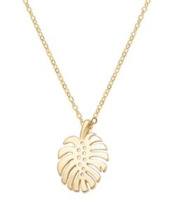 collier monstera